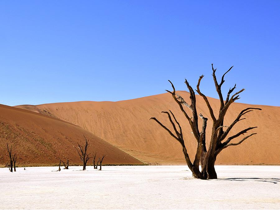natuurlijk namibie